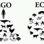 ego_to_eco