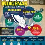 info-pueblos-indigenas
