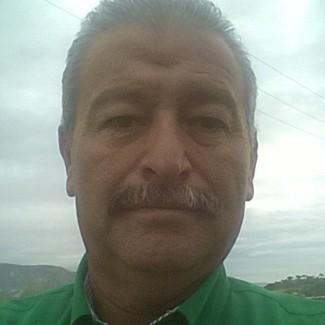 Foto del perfil de SILVESTRE